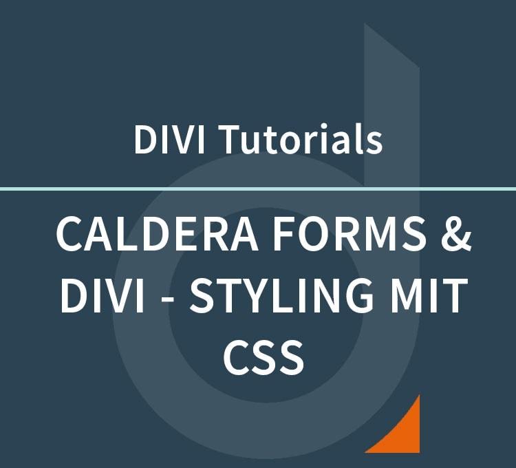 Caldera Forms und DIVI – Gestaltung der Formularfelder mit CSS